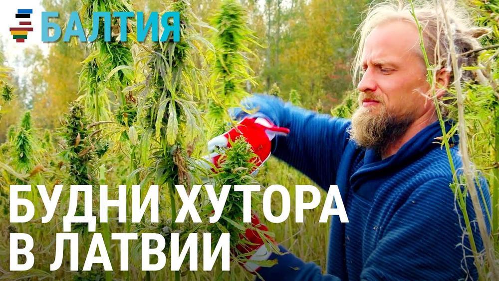 Латвийский хутор. Балтия